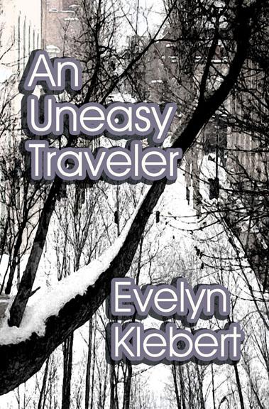 travelsilver6-copy